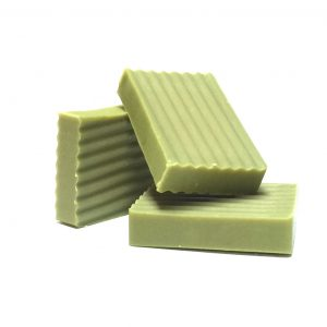 PRICKLY CACTUS BAR SOAP