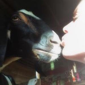 farm fresh goat soap